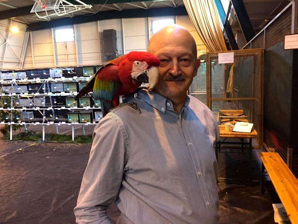 Des perruches et des perroquets ce week-end à Stiring-Wendel
