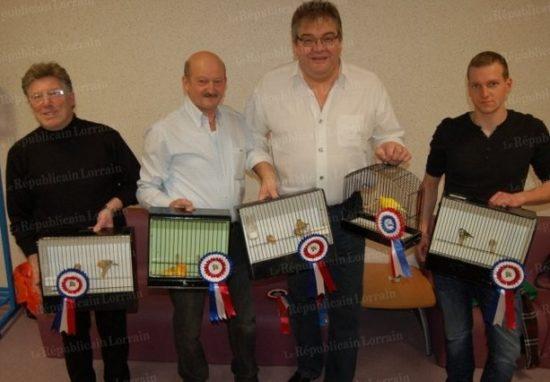 Nuée de titres pour les éleveurs de canaris, qui font du club Stiringeois le 2e club le plus titré de la région